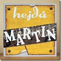 Hejda Martin_framsida_stor
