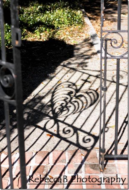 W gate shadow