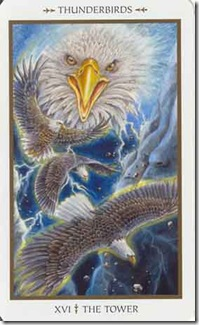 Animals Divine Tarot (16)