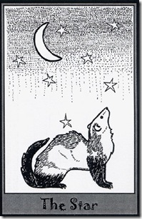 Ferret Tarot (17)