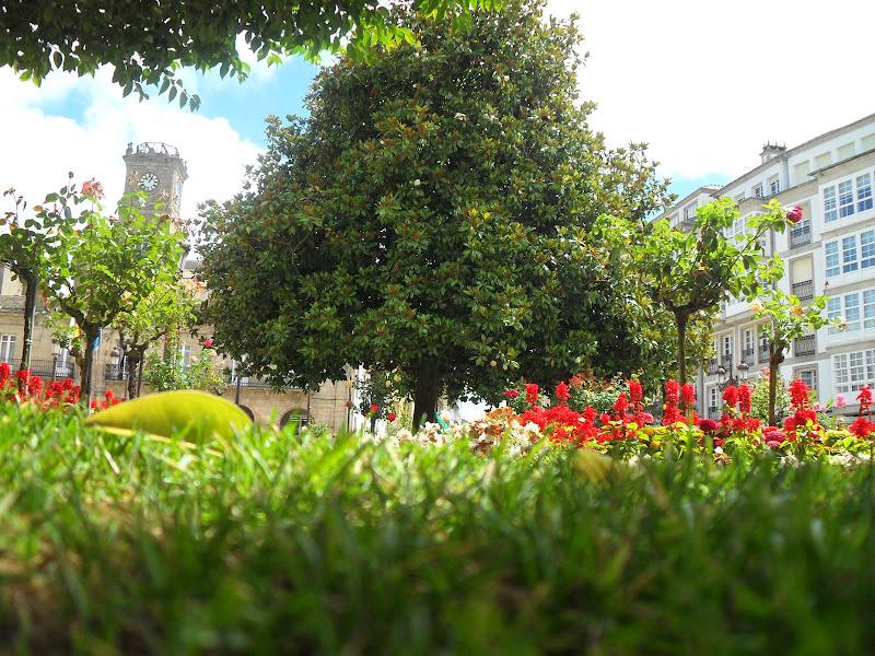 Subida NASCENTE RIO MINHO  Ferias2009 SDC11266