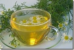Chamomile Tea 03