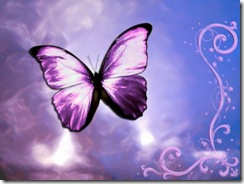 Butterfly_Wallpaper
