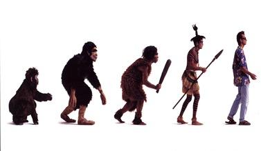 evolution4fun
