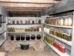 Root Cellar /