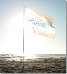 bandera[1]
