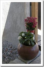 Plants & boug 001-2