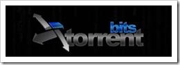 TorrentBits