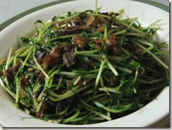 organic soybean sprout