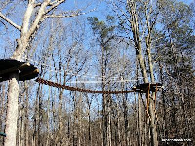 Tree Climbing Platform