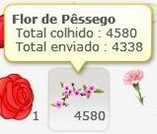 flordepessego