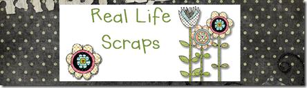 Real_Life_Header_2[6]