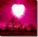 sol de amore