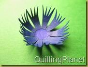 QuillingPlanet_216
