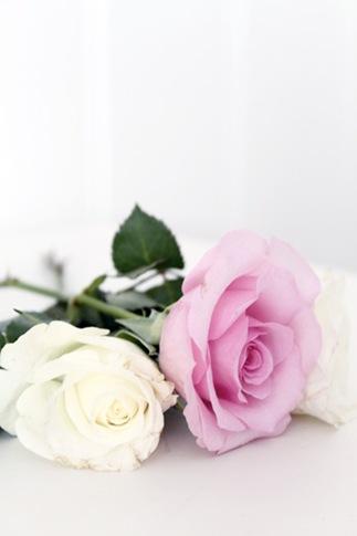 Happy valentine`s day2