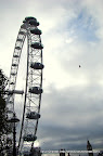 London Eye, Big Ben and a flight of Freedom, Tarun Chandel Photoblog