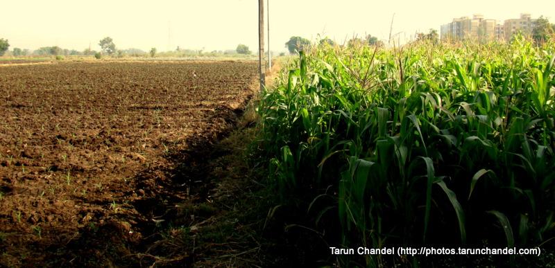 Contrast Nashik Trip 2009, Tarun Chandel Photoblog