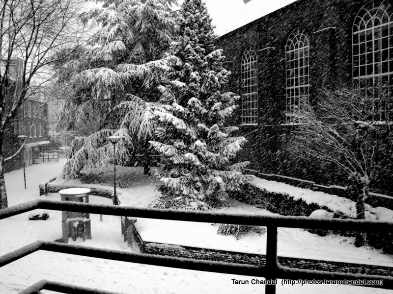Christmas Snow, Tarun Chandel Photoblog