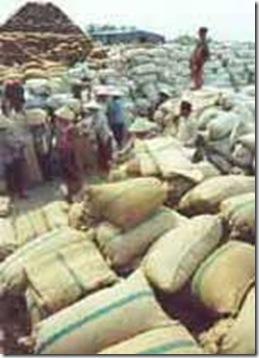 rice traders-tadepalligudem