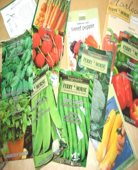 seeds -tanuku
