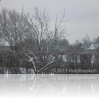 vinter 002