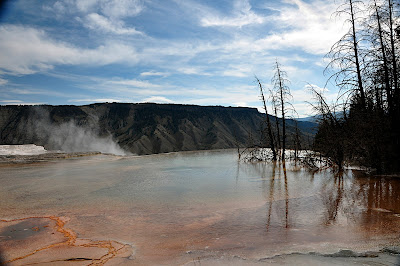 Canary Springs area of Mammoth Hot Springs