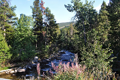West Fork of Rock Creek at Silver Run outside Red Lodge, MT