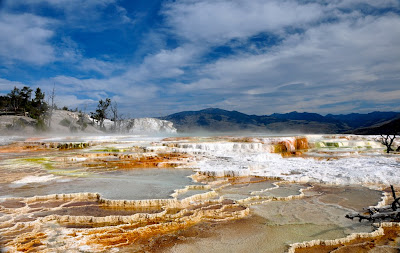view of terraces at Mammoth Hot Springs, Yellowstone National Park