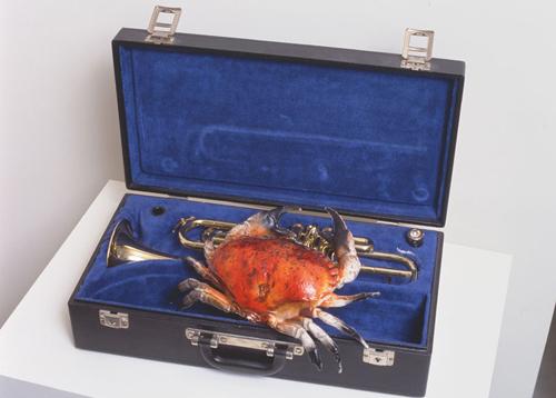 Tempete sous un crabe