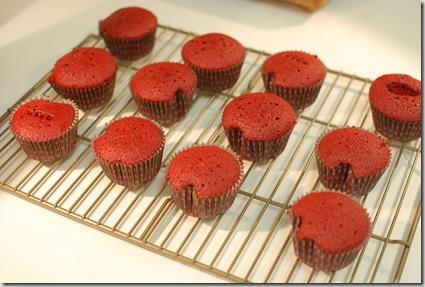 cupcakes 008
