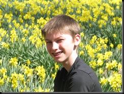 Daffodil gardens 026