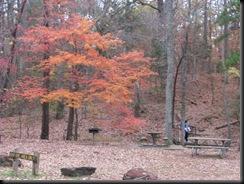 Tyler State Park Dec. '10 027