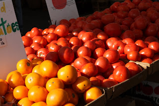 picture of red and yellow tomatoes
