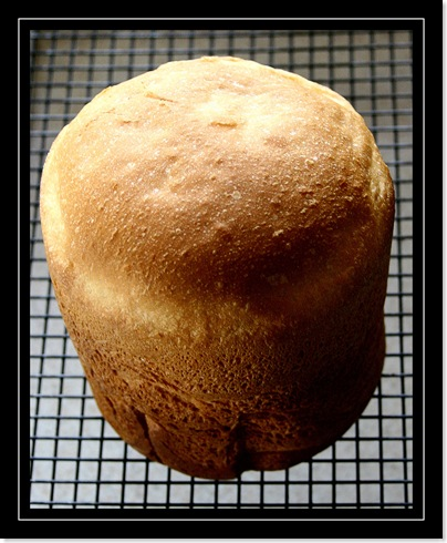 Fresh bread for blog