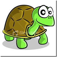 Chuyện nhà Rùa