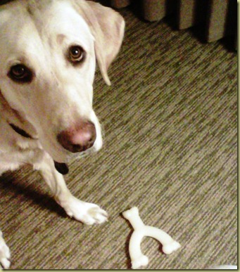 Close up of Reyna's face in the hotel room with her wishbone.
