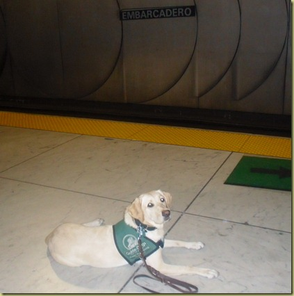 Reyna laying down at the Embarcadero station waiting for the BART train.  Finally on our way home after a long day!
