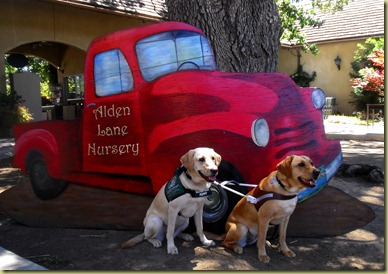 Reyna and Wendy sitting in front of a cut out of an old red truck that says Alden Lane Nursery.