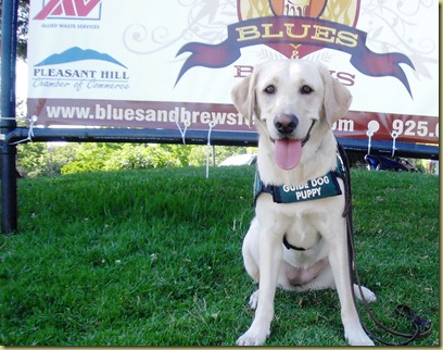 Reyna sitting with the Blues and Brew Festival sign in the background.  Of course, she is smiling for the camera!