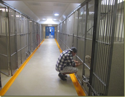 Tyler bending down putting his hands through the kennel bars saying his final good bye to Reyna.