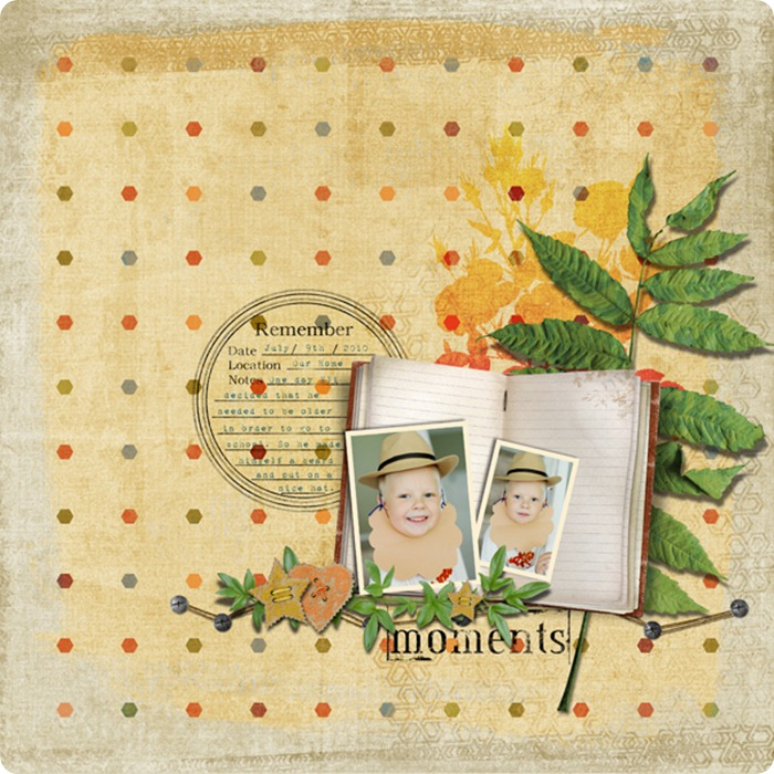 Layout by Laurel Lakey uses Scenic Route Collection, ScrapSimple Paper Templates: Textured Paint, Dynamic Brush Set: Textured 8201, A Gardener's Diary Collection, Rustique Collection, Falling Leaves Collection Mini, Noteworthy Collection Biggie, and Brush Set: Flowers in Silhouette.