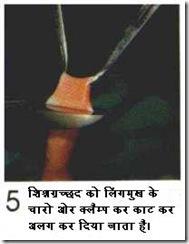 hindicirc5
