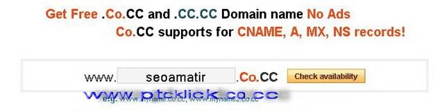 Setting Domain gratis (co.cc) dan dapat Dollar Gratis