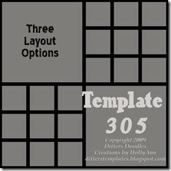 DDTT-Temp305prv