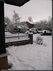 Dec-2010 002