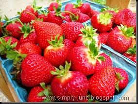 StrawberryFarm3