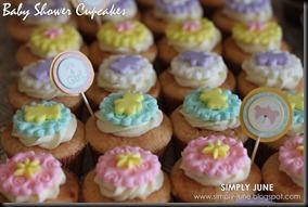 BabyShowerCupcakes2