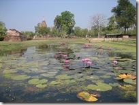 Pond at Sukhothai