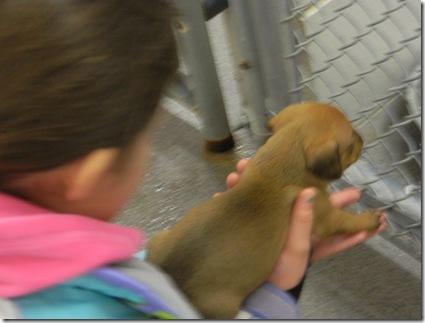 Humane Society Visit 077