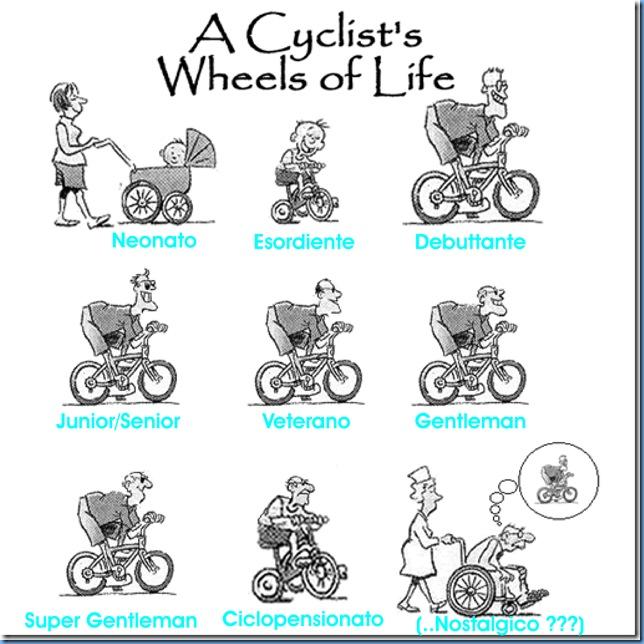 Ciclo di vita ciclista